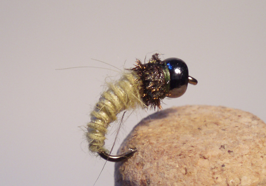 Bead Head Caddis Larva