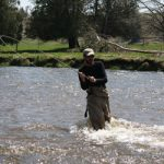 fly-fishing-the-nine-mile-river-ontario-steelhead