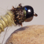 bead-head-caddis
