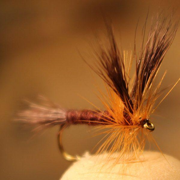 split-wing-hendrickson-dark